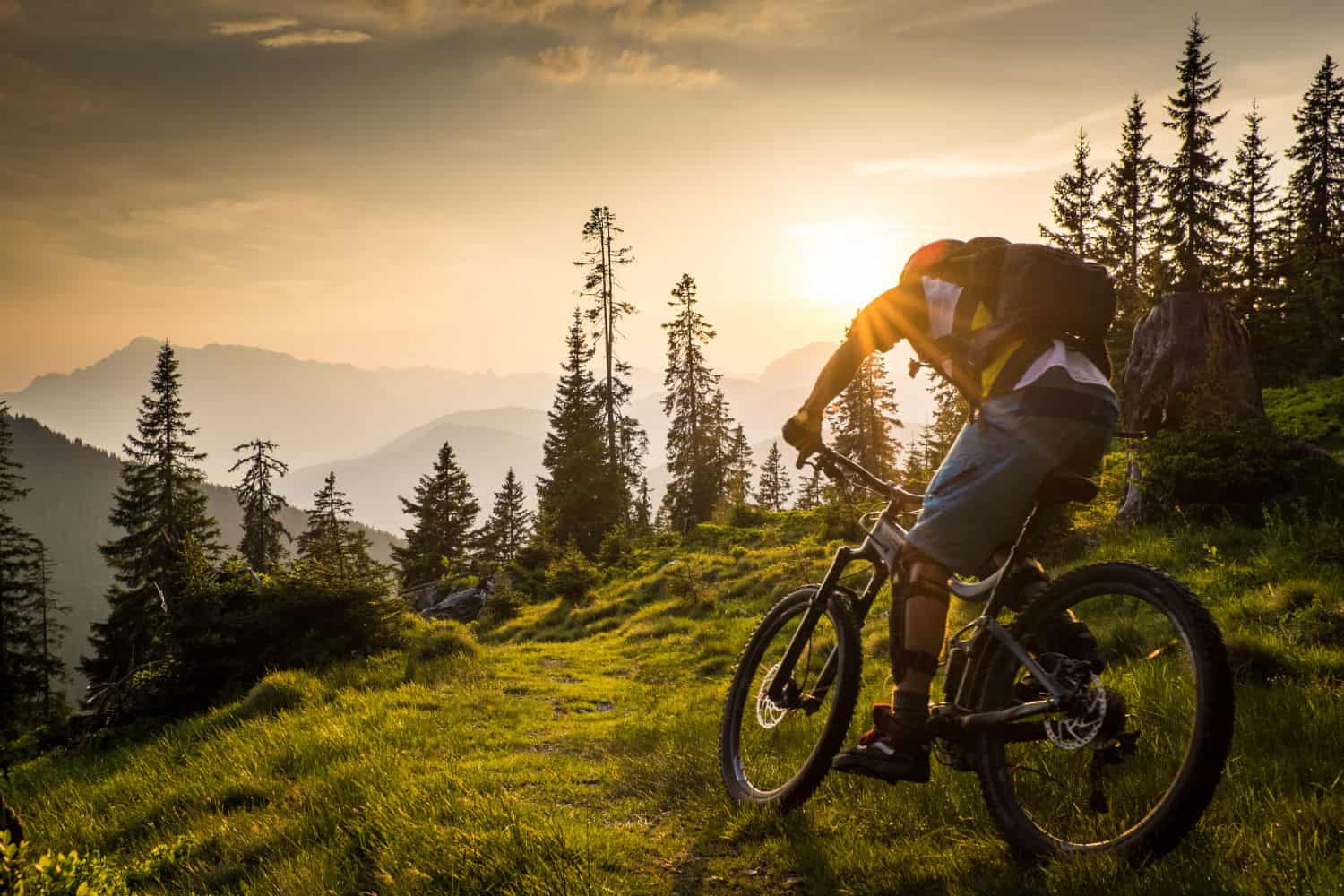 For adrenaline junkies, there is only one destination: The Bikepark Wagrain, one of Austria's best downhill bike park.